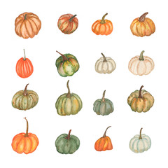 Watercolor set of different pumpkins on white background. Hand drawn. Perfect design for textile, invitations, banners, greeting cards, event projects, posters.