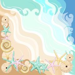 In de dag Draw Seashells and starfish Beach Summer Frame Vector Illustration