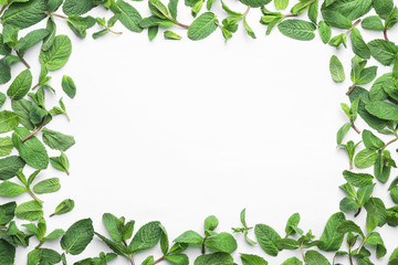 Frame made of fresh green mint leaves on white background, top view. Space for text