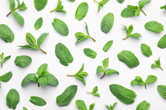 Fresh green mint leaves on white background, top view