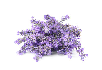 Tuinposter Lavendel Beautiful tender lavender flowers on white background