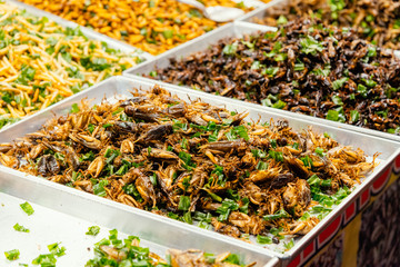 Various of fried insect in the street food market of Thailand. Picture with grain and color from film simulation filter.