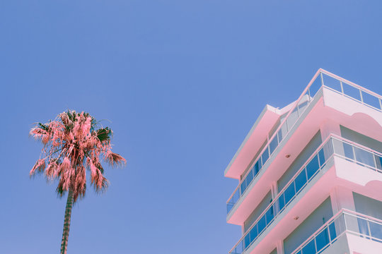 Orange palm tree and part of hotel. Minimal infrared style