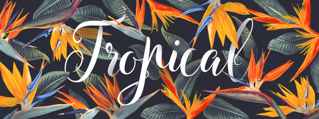 Summer tropical vector design for banner or flyer with Strelitzia Reginae, tropical flowers and leaves, South African plant, called crane flower or bird of paradise and lettering. Realistic style.