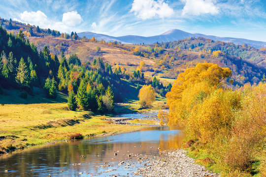 beautiful countryside in autumn colors. mountain river runs through valley. trees in fall foliage on the shore. ridge with high summit in the far distance. fluffy clouds on the blue sky