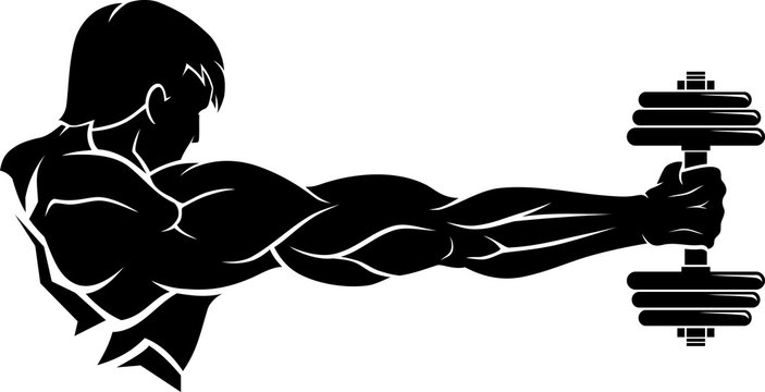 Muscular Male Arms with Barbell