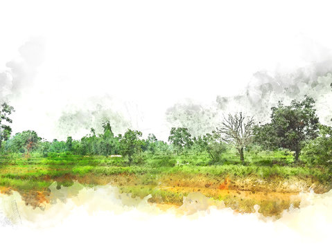 Abstract colofrul tree land field landscape on watercolor illustration painting background.