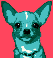 illustration of a dog in pop art blue chihuahua
