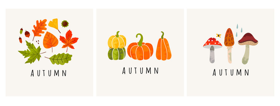Autumn mood. Set of three colored trendy vector illustrations. Hand drawn various mushrooms, pumpkins and leaves. Flat design. Stamp texture. Greeting cards. Every illustration is isolated