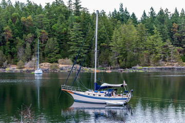 Fototapete - View over Inlet, ocean and island with boat and rocks in beautiful British Columbia. Canada.