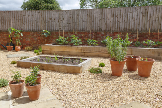 Raised beds in kitchen garden