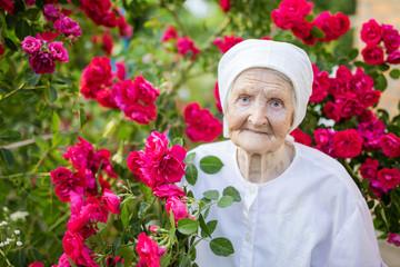 Senior woman standing at blooming bush of roses