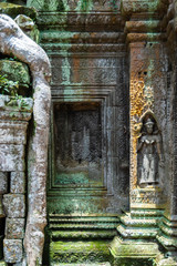 Ta Prohm Carvings and Tree Root