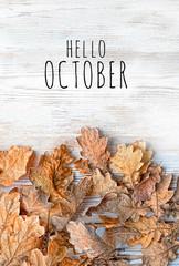 Hello October. autumn oak leaves on white wooden background. autumn composition. autumn season concept minimalism. fall time. top view