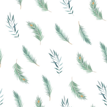 Watercolor seamless pattern with pine branches