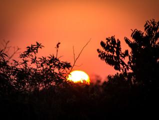 Keuken foto achterwand Rood sunset