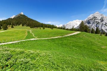 Wall Mural - Road trough alps. Austria, Gnadenwald, Walderalm, Tyrol Region