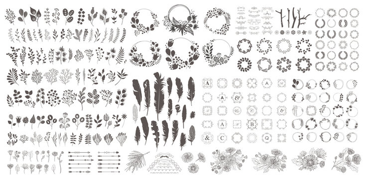 Big set with wreath, design elements, frames, calligraphic. Vector floral illustration with branches, berries, feathers and leaves. Nature frame on white background.