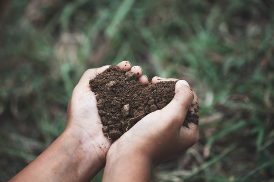 Child hand holding the soil in the heart shape prepare for plant the tree
