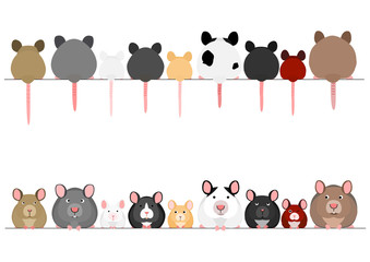 cute mice and rats in a row Fototapete