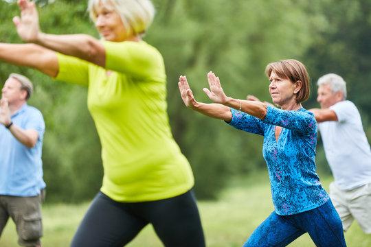 Seniors do Qi Gong or Tai Chi exercise