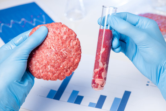 Ground meat sample burger patty in lab scientist hand. Clean artificial cultured meat in laboratory test tube concept.