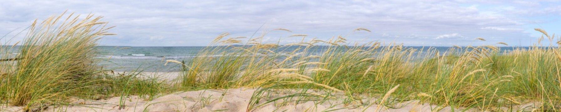 Panorama in den Dünen, Ostsee