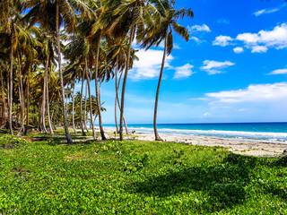 The beach Las Cañas