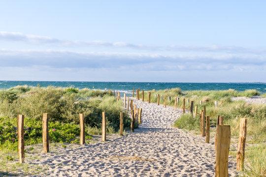 Weg zum Strand durch die Dünen