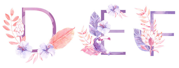 Watercolor Hand Drawn tropic letters monograms or logo. Uppercase D, E, F with jungle herbal decorations. Palm and monstera leaves, flowers and toucan