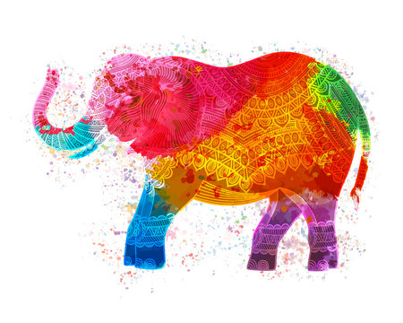 Colorful Indian elephant. isolated on white. Vector illustration.