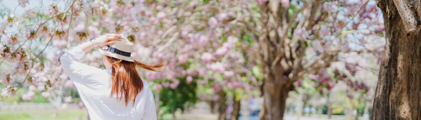 web spring season with full bloom pink flower travel concept from backside of beauty asian woman with wear summer hat enjoy with sight seeing sakura or cherry blossom with soft focus flower background