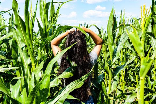 girl walking on a corn field