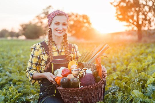 Bäuerin verkauft gesundes und buntes Gemüse