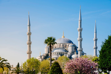 Blue Mosque in spring, Istanbul, Turkey