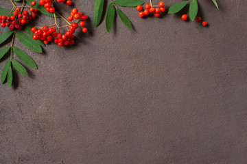 Wall Mural - Autumn background with bright ripe rowen and leaves