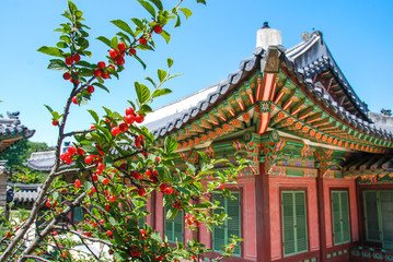 Traditional Korean style architecture at some village, South Korea.