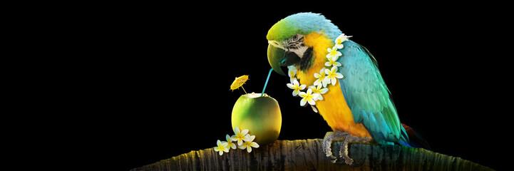 Fotorolgordijn Papegaai Papagei mit Cocktail im Urlaub am Strand