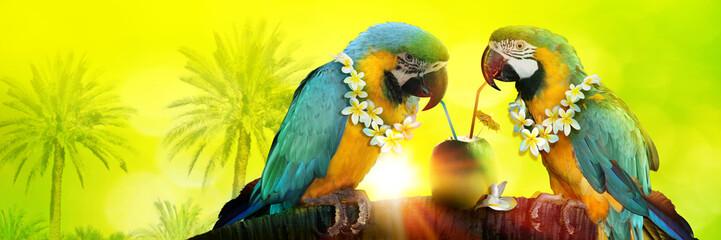 Photo sur Aluminium Perroquets Papageien im Urlaub am Strand in den Flitterwochen