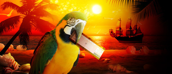 Papagei im Urlaub am Strand