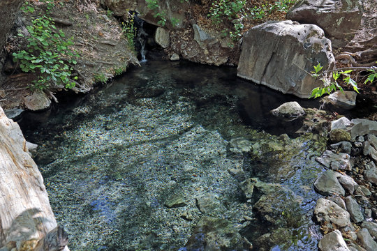 The Jordan Hot Springs, in the Gila National Forest, New Mexico.