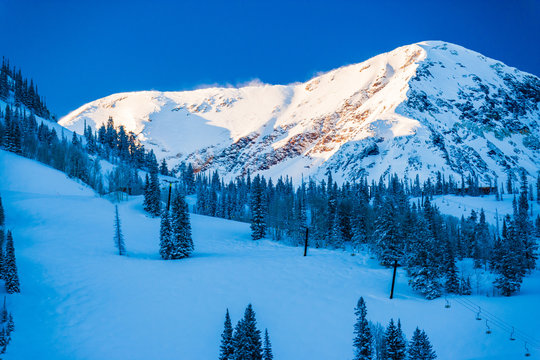 Ski trails in Snowbird, Utah, USA