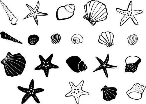 海 手描き 素材
