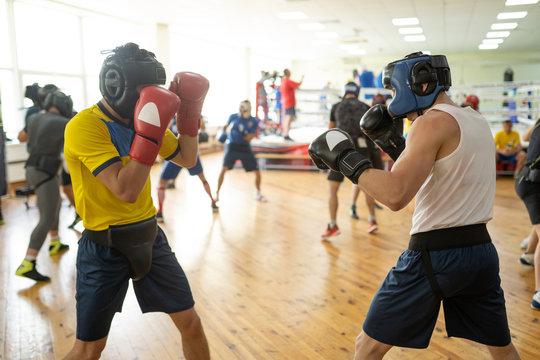 Boxing fighters exercising