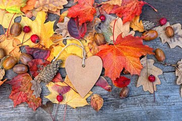 Autumn Background with heart blank greeting card and colourful leaves over wooden board. Thanksgiving wooden table decorated with bright autumn leaves. Autumn season background, fall backdrop.