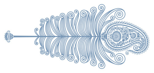 Peacock feather. Paisley pattern. Vector drawing. Decorative image