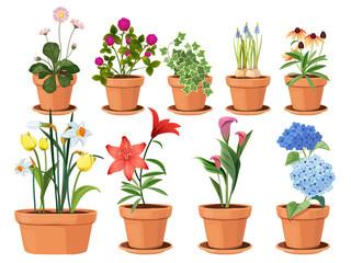 Fototapeta Flowers pot. Nature cartoon vector illustration of flowers and leaves beautiful collection. Blossom plant, botanical flowerpot obraz