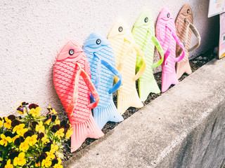 Traditional japanese shoes sandals, fishes