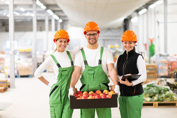 Organic food production and distribution concept. Portrait of a positive team of workers at warehouse, man holding crate with apples.