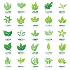 Leaves Logo Vectors Pack